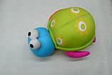 """""""Черепашка"""" игрушка- антистресс, разноцветные игрушки, фото 2"""