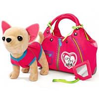 Чихуахуа Молния Zipper с сумкой CHI CHI LOVE 5890617