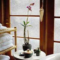 Декоративная интерьерная тонировка стеклянных перегородок Паутинка, фото 1