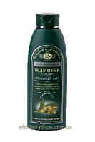 Шампунь для всех типов волос имбирь и зеленый чай IriS Фито Терапия