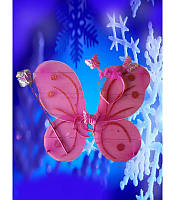 Набор крылья бабочки №1