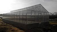 Теплицы Митлайдера 6х6 под поликарбонат стандарт 4 мм (ширина 6 метров)
