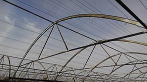 Теплицы Митлайдера 6х8 под поликарбонат премиум 8 мм (ширина 6 метров)