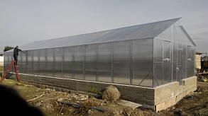 Теплицы Митлайдера 6х10 под поликарбонат премиум 4 мм (ширина 6 метров)