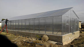 Теплицы Митлайдера 6х8 под поликарбонат стандарт 8 мм (ширина 6 метров)