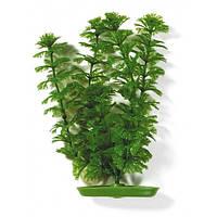 Hagen Marina Ambulia пластиковое растение 20см