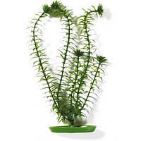 Hagen Marina Anacharis пластиковое растение 13см