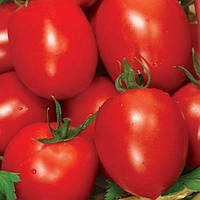 Семена томата Рио Фуего весовые в Украине