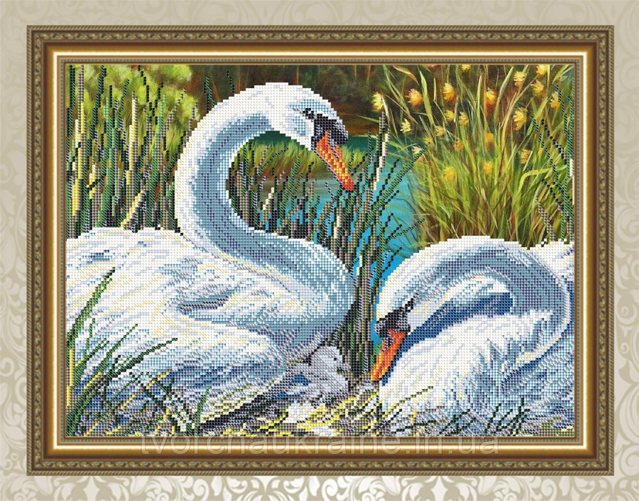 Авторская канва для вышивки бисером «Лебединая семья»
