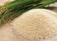 Рисовых отрубей масло, раф., 100 мл