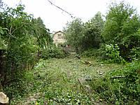 Удаление кустарника Удаление кустарников, фото 1