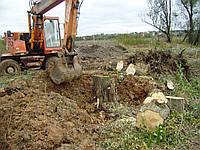 Корчевание деревьев Удаление пней деревьев, фото 1