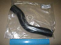 Патрубок радиатора верхний подводящий CHEVROLET AVEO 1,5 96536591  DK.96536591