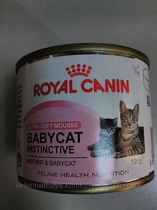 Royal Canin(baby cat instinctive) влажный рацион для котят до4 мес.195г., фото 2