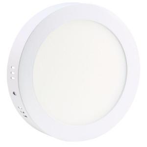 Светильник точечный светодиодный 24Вт накладной Biom круглый белый свет