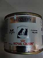 Royal Canin(Recovery)Восстановительный период после болезни.Период выздоровления.195г.