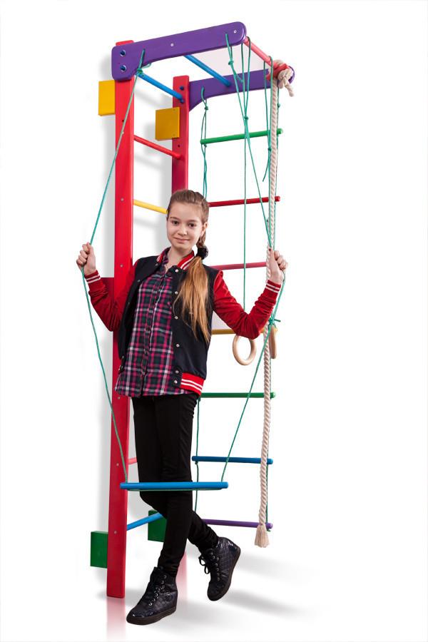Спортивный комплекс для дома «Teenager-3-220 (barby)»