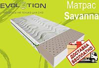 Матрас ортопедический беспружинный Savanna (Саванна) серии Evolution, фото 1