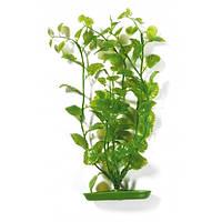 Hagen Marina Cardamine пластиковое растение 20см