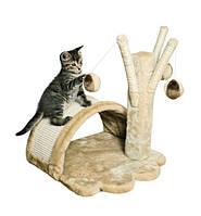 Як правильно вибрати когтеточку (дряпку) для кішок?