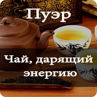 Покупка чая пуэр. Как выбрать подходящий?