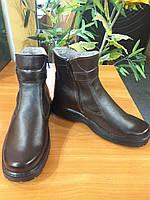 Ботинки зимние (коричневые)