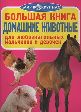 Велика книга. Домашні тварини