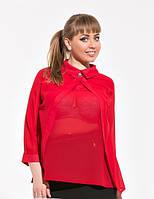 Блуза женская  в расцветках 14386