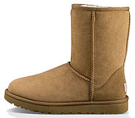 Зимние женские сапоги UGG Classic Short (короткие угги угг австралия) коричневые