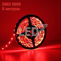 5 метров — светодиодная лента 5050, красный, 60 д/м, IP22
