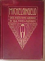 Книга Микеланджело,1906 год  Собрание жизнедеятельности с множественными иллюстрациями произведений