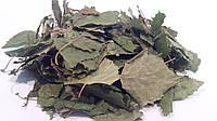 Береза повислая листья 100 грамм