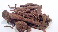 Одуванчик корень 100 грамм (кульбаба)