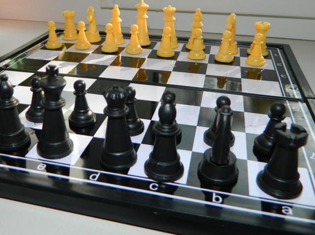 Шахматы на магнитах