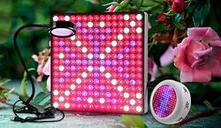 Фитолампы: светодиодные лампы для растений из Китая