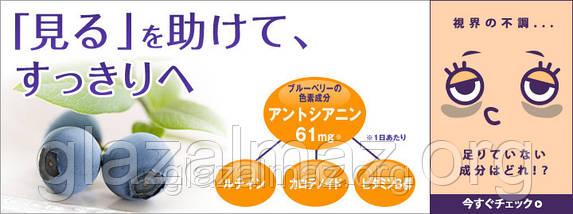 DHC Blueberry Extract японские витамины с экстрактом Черники 20 дней - 40 гранул, фото 2