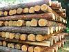 Деревянный столбик, подтоварник деревянный