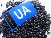 Семена подсолнечника Ясон от производителя