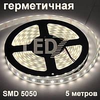 5 метров — герметичная светодиодная лента 5050, 60 д/м, натуральный белый, IP67