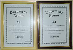 Рамка 21*30 см, А-4, асорті
