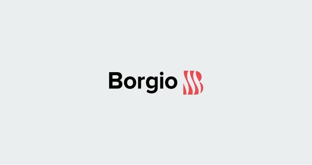 Кухонные мойки borgio