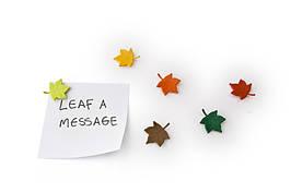 Набор магнитов Qualy Leaf a Message