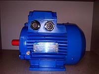 Электродвигатель АИРM63А2 (АИР 63 А2) 380 В, 0,37 кВт, 3000 об/мин