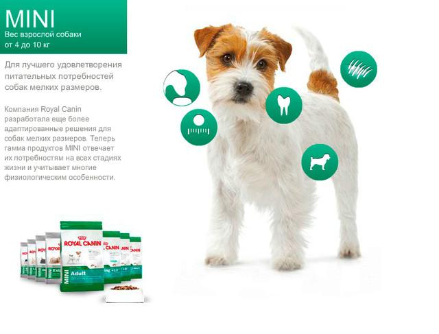 Royal Canin Mini для собак вагою до 10 кг
