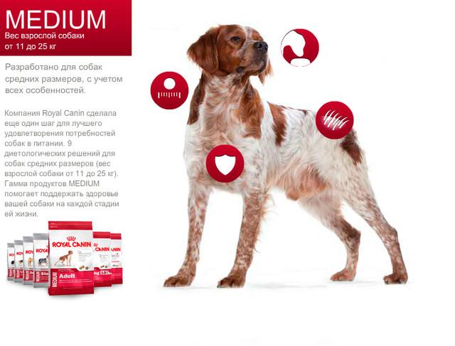 Royal Canin Medium для собак вагою від 10 до 25 кг
