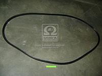Уплотнитель стекла ветрового КАМАЗ ЕВРО (пр-во БРТ)