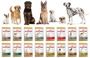 Royal Canin для дорослих собак окремих порід