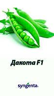 Семена гороха Дакота (Syngenta) 100000 семян / 100 тыс сем - (50 дней), крупнозернистый, овощной