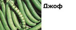 Семена гороха Джоф (Syngenta) 100000 семян/100 тыс. сем — (90-100 дней), поздний, крупнозернистый, овощной, фото 2