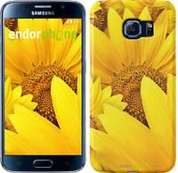 "Чехол на Samsung Galaxy S6 G920 Подсолнухи ""234c-80"""